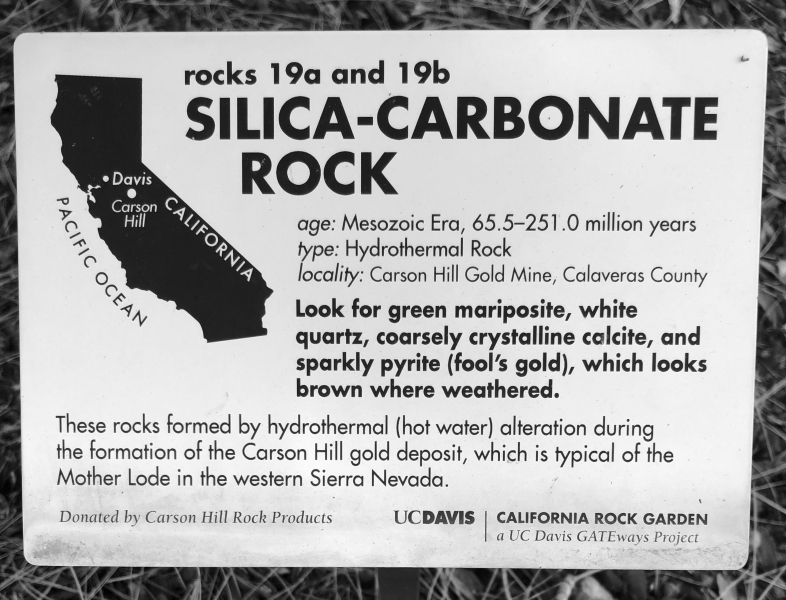 silica-carbonate-rock